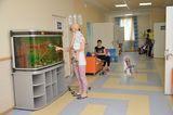 Клиника Ростовский научно-исследовательский онкологический институт, фото №4