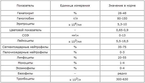 Ростов часа стоимость нормо марки дизель стоимость часы